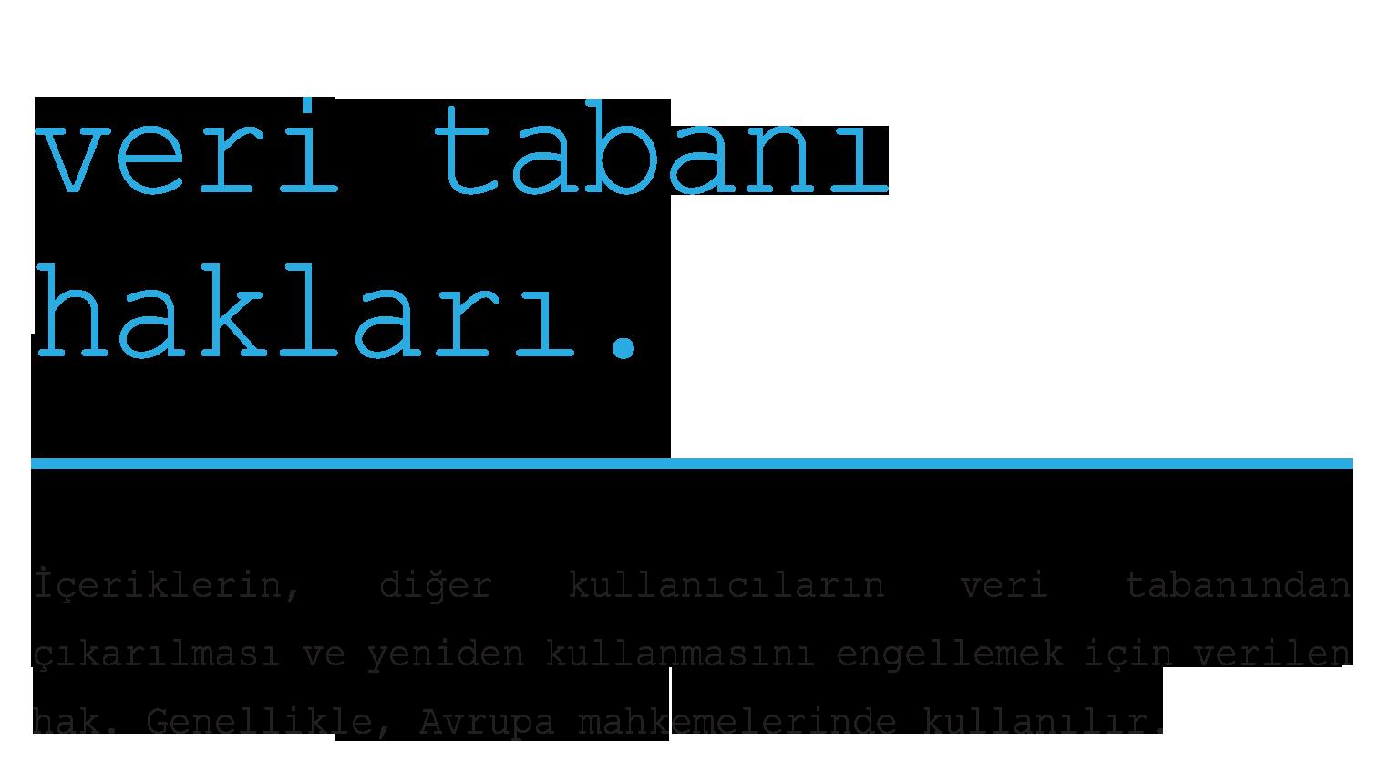 Acik-Veri-Sozlugu-40