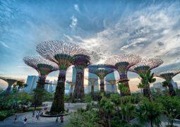 Çevre dostu şehirler neye benzeyecek?