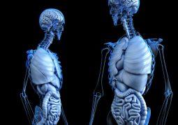Yapay zeka kanseri teşhis edebiliyor