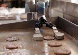 Burger robotu