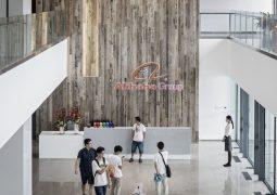 Alibaba'nın mağaza tutkusu yatırımcıları korkutuyor