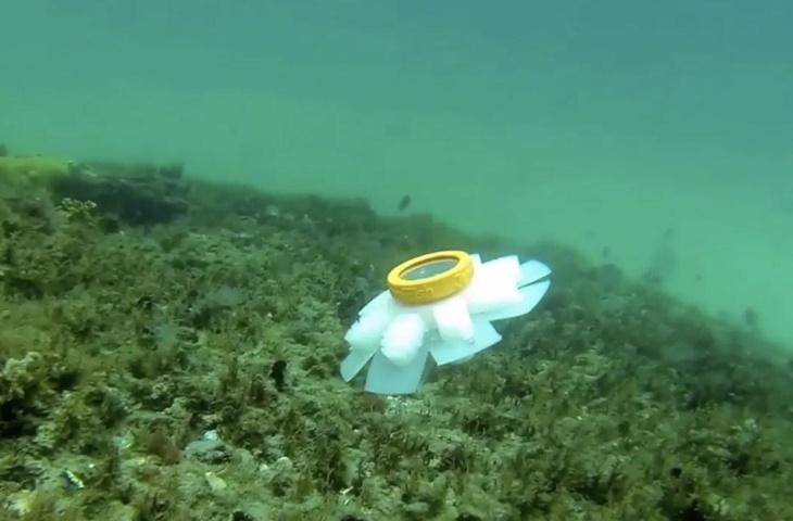 Otonom denizanası