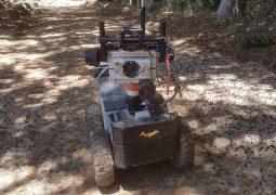 yarasa robot