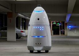 güvenlik robotu