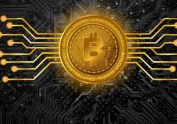 kripto para farkındalığı