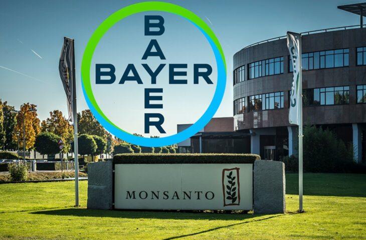 Bayer kanser suçlamaları