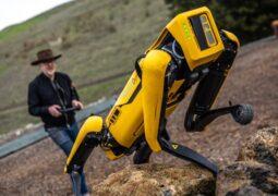 Robot köpek Spot fiyatı açıklandı
