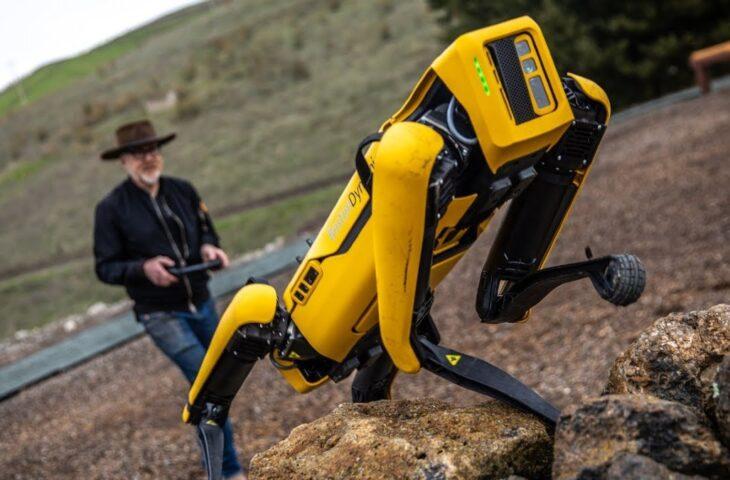 robot köpek Spot