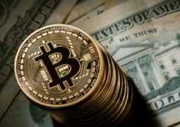 Kripto para girişimleri için koruma fonu geliyor