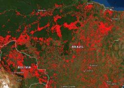Google Haritalar orman yangınları