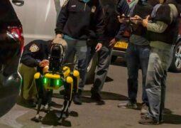 Robot köpek Spot polis