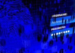 Microsoft otomatik şifre doldurma