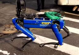 NYPD robot köpek Spot
