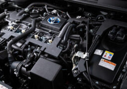 Toyota Clean Assist Programı