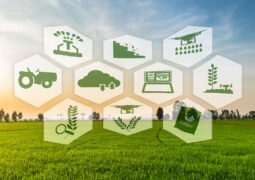 Yerli tarım teknolojisi girişimine 6 milyon TL'lik yatırım!