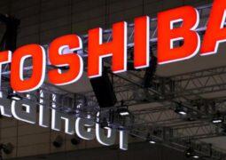 Toshiba sermaye şirketleri
