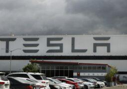 Tesla ırkçılık